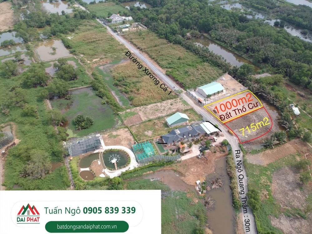 Can Ban Dat Biet Thu Vuon Duong Xuong Ca 1ngo Quang Tham Nha Be