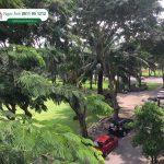 Ban Can Ho My Vien Pmh Gia 3.7 Tỷ, Dt : 95m2 View Công Viên